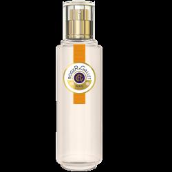 R&G Gingembre Eau fraîche parfumée 30ml