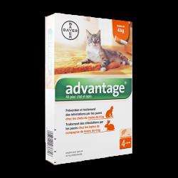 Advantage 40 Spot-on chats et lapins -4kg 4 pipettes