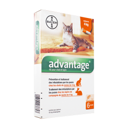 Advantage 40 Spot-on chats et lapins -4kg 6 pipettes