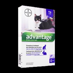 Advantage 80 Spot-on chats et lapins 4kg et + 4 pipettes