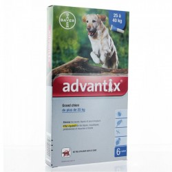 Advantix Antiparasitaire externe grand chien 6 pipettes