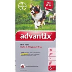 Advantix Antiparasitaire externe moyen chien 6 pipettes