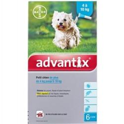 Advantix Antiparasitaire externe petit chien 6 pipettes
