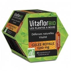 Vitaflorbio gelée royale 1500mg 20 ampoules
